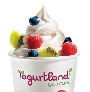 yogurtland500