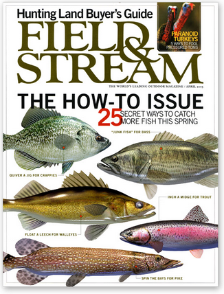 free field and stream