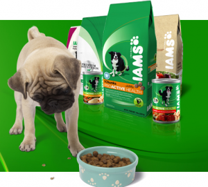 Free-iams-welcome-fit-giveaways-coupons