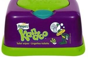kandoo-wipes