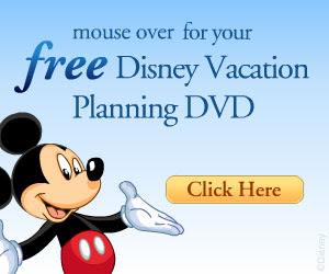 DisneyParksDVD300x250